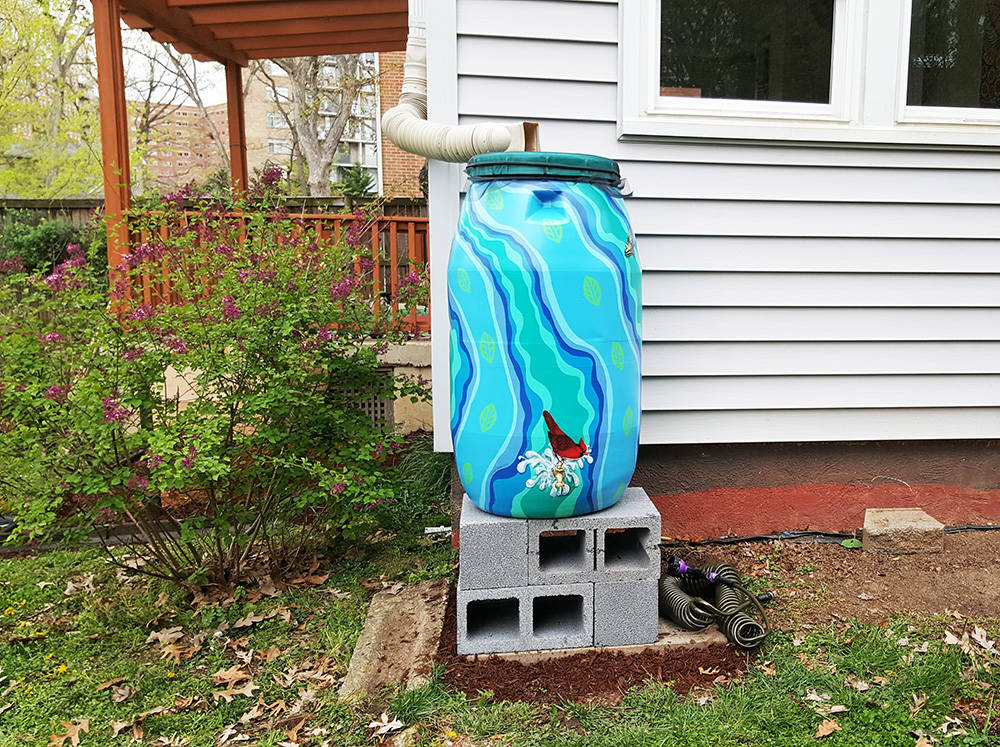 a rain barrel after installation