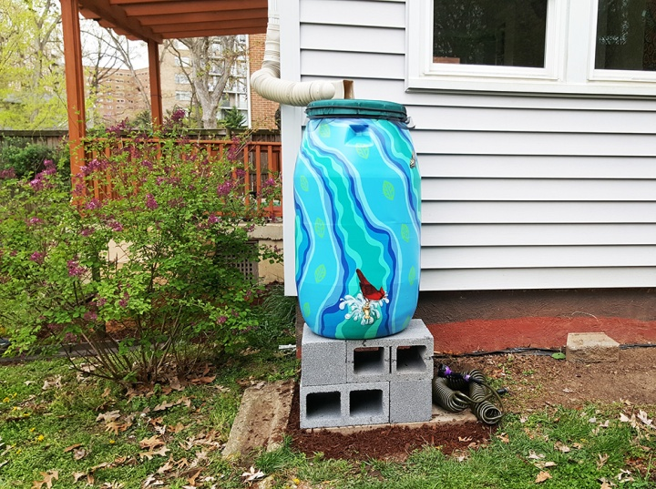 Adventures in Rain Barrel Installation